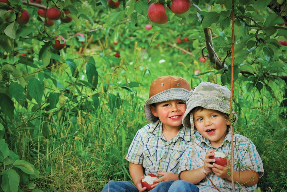 children eating pick your own apples